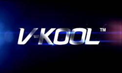 logo-vikool.org