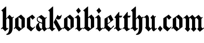 hocakoibietthu.com– Cộng đồng kinh doanh Vinaseoviet